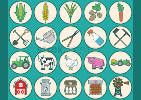 Chicken : Collection of agriculture icons