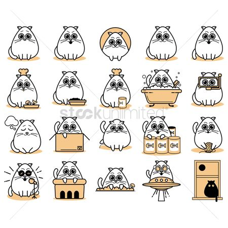 Chef : Collection of cat icons