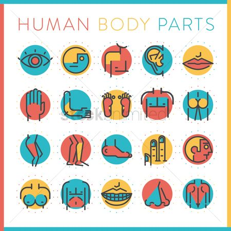 Humans : Collection of human body parts