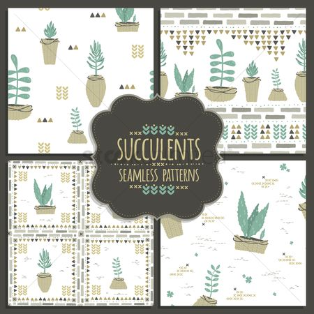 Flower pot : Collection of seamless succulent designs