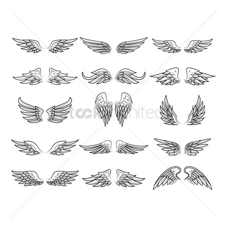 Sketching : Collection of wing designs