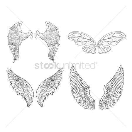 Flights : Collection of wing designs