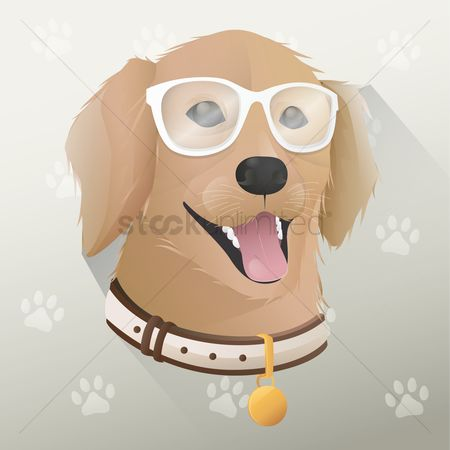 Animal : Cute dog with glasses