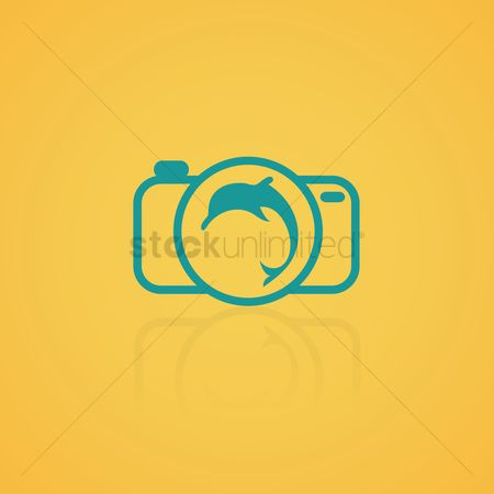 Dolphins : Dolphin in a camera icon