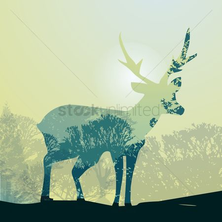 Combine : Double exposure deer and forest