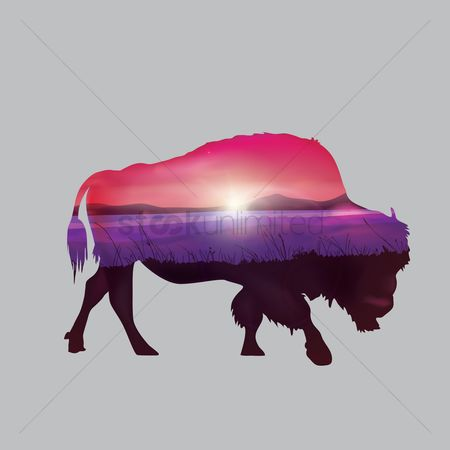 Grass : Double exposure of bison and nature