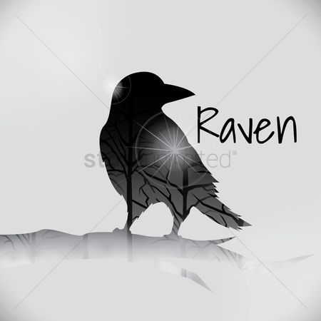 Double exposure : Double exposure of raven and trees