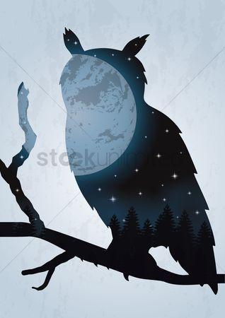 Moon : Double exposure owl and night sky