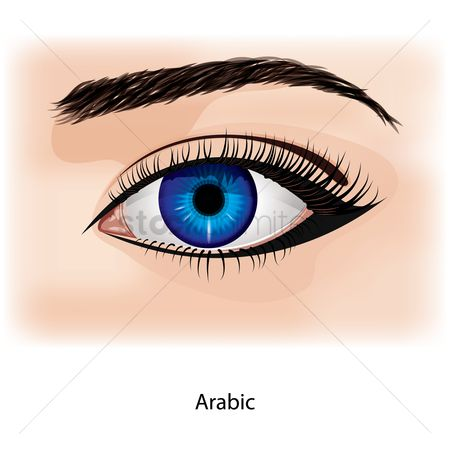 Cosmetic : Eye with arabic