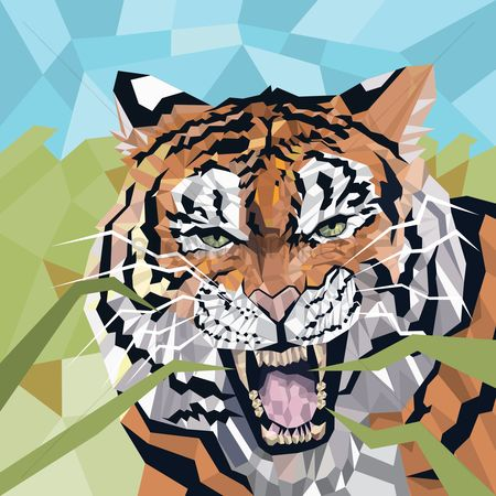 Faceted : Faceted tiger