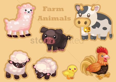 Cow : Farm animals