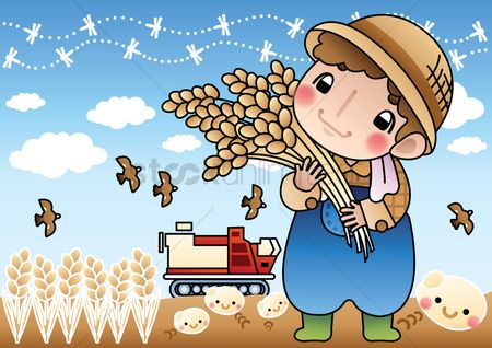 Wheats : Farmer holding wheat stalks