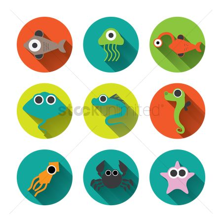 Starfishes : Fish icons