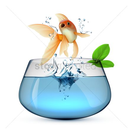 Free Fish Jump Stock Vectors Stockunlimited