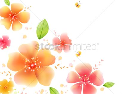 Flower : Floral flower background