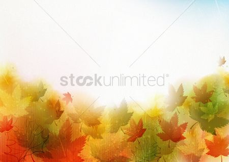 Leaves : Floral leaves background