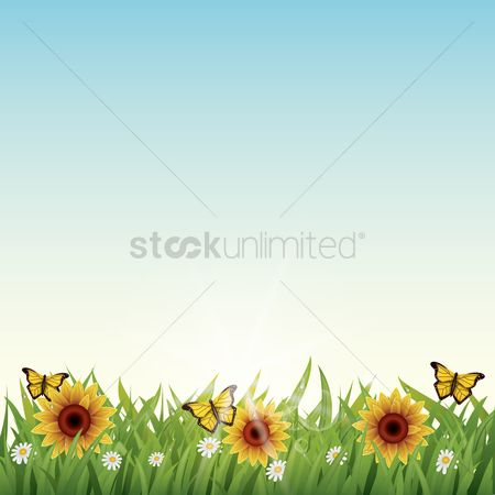 Grass background : Flowers background