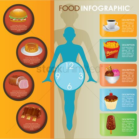 French fries : Food infographic