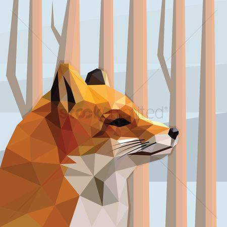 Faceted : Fox