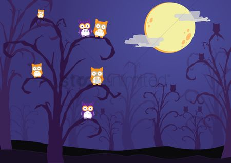 Owl : Halloween background