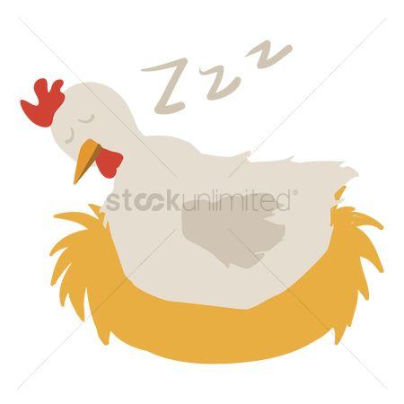 Картинка спящая курица