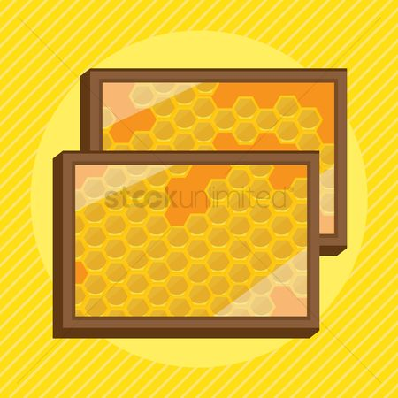 Honeycomb : Honeycomb in frames