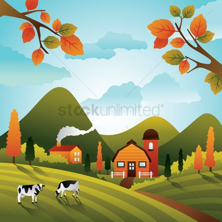 Cow : House in a countryside