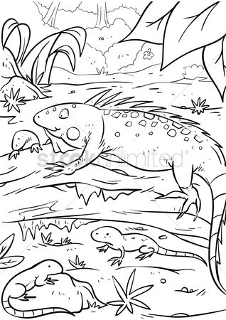 Colorings : Iguana with hatchlings