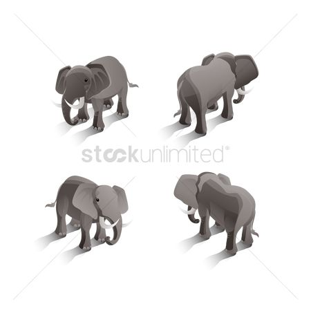 Posing : Isometric elephants