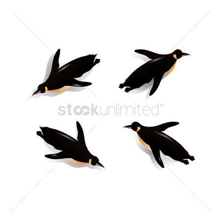 Posing : Isometric penguins