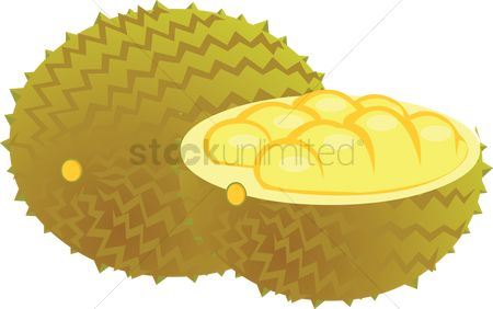 Nutritions : Jackfruit over a white background