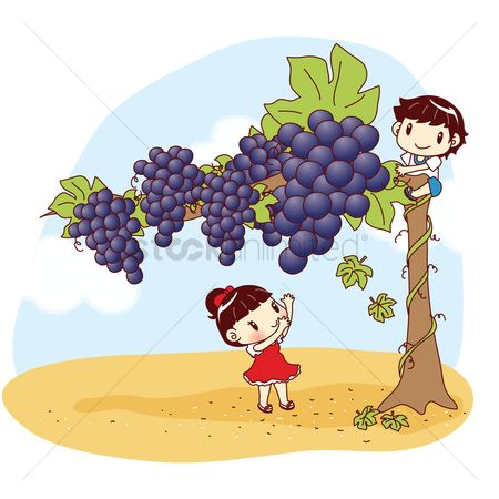 Grapes : Kids plucking giant grapes