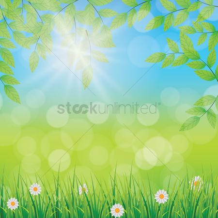 Sunray : Leaves background