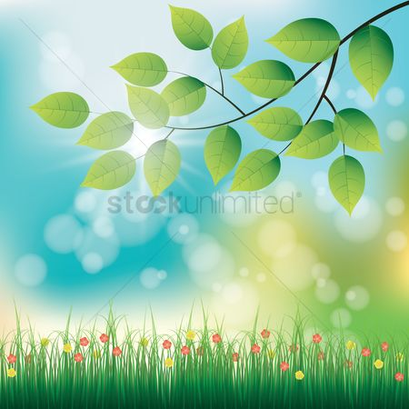 Spring : Leaves with grass and flowers background