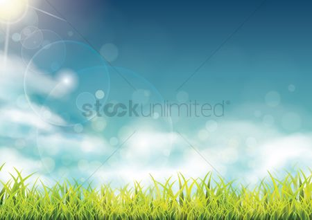 Grass background : Nature background