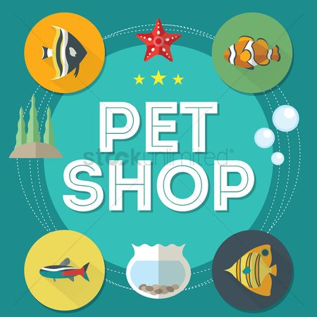 Starfishes : Pet shop