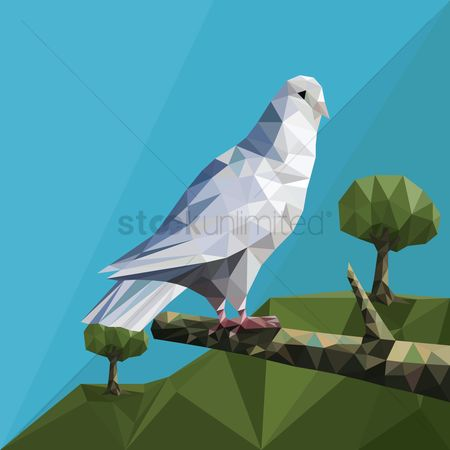 Polygonal : Pigeon sitting on a branch