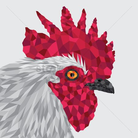 Chicken : Polygonal chicken