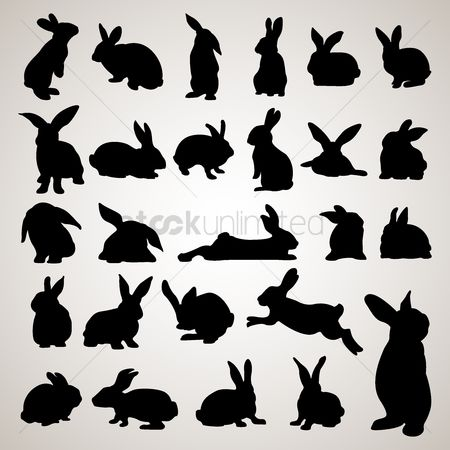 Laying : Rabbit silhouettes