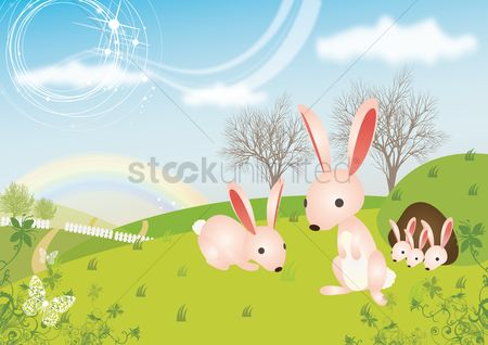 Hills : Rabbits in garden