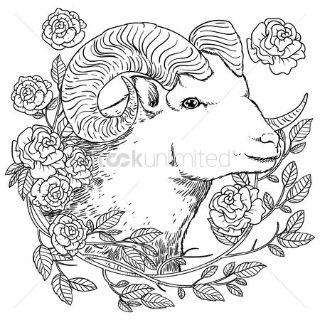 Budding : Ram design