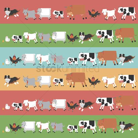 Cow : Rows of farm animals
