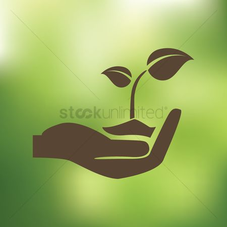 Save trees : Sapling in hand