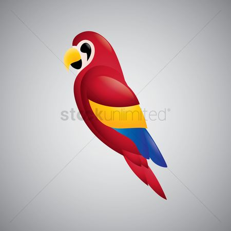 Animal : Scarlet macaw parrot