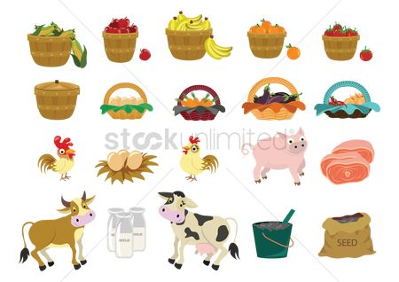 Cow : Set of agriculture icons