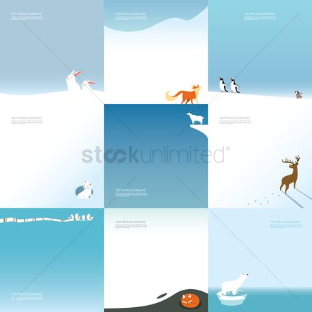 Lorem ipsum : Set of animal themed background