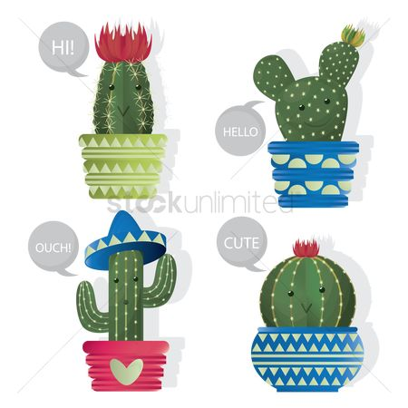 Cactuses : Set of cactus plants in a pot