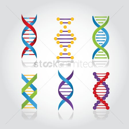 Dna : Set of dna