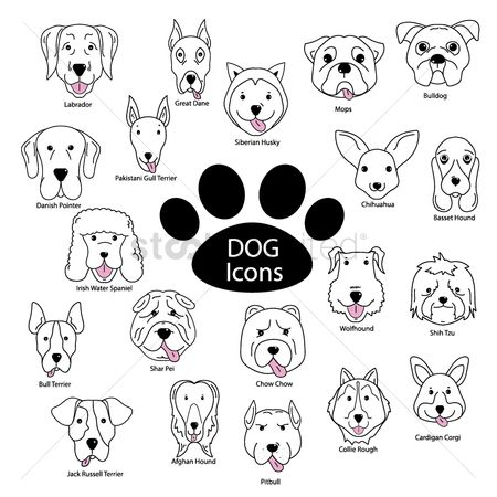 Jack : Set of dog icons