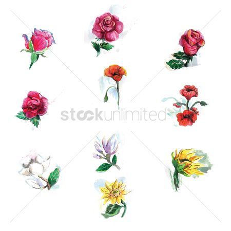 Florals : Set of flowers
